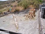 Versteende woud bij Sigri foto8 - Foto van De Griekse Gids