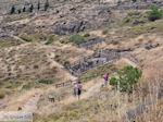 Versteende woud bij Sigri foto9 - Foto van De Griekse Gids