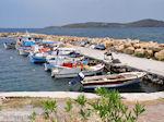 Vissersbootjes Sigri - Foto van De Griekse Gids