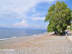 Het zand- kiezelstrand in Eftalou nabij Molyvos - Foto van De Griekse Gids