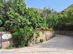 Restaurant Eftalou nabij Molyvos foto 4 - Foto van De Griekse Gids