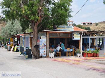 Restaurant Taverna Golden Sand Anaxos - Foto van De Griekse Gids