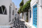 Mykonos stad (Chora) | Griekenland | De Griekse Gids foto 25 - Foto van De Griekse Gids