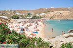 Super Paradise strand | Mykonos | Griekenland foto 16 - Foto van De Griekse Gids