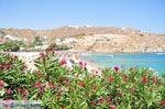 Super Paradise strand | Mykonos | Griekenland foto 17 - Foto van De Griekse Gids