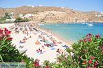 Super Paradise strand | Mykonos | Griekenland foto 18 - Foto van De Griekse Gids