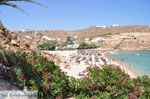 Super Paradise strand | Mykonos | Griekenland foto 20 - Foto van De Griekse Gids