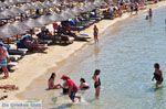 Platis Gialos Mykonos | Griekenland | De Griekse Gids foto 7 - Foto van De Griekse Gids