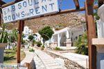 Psarou beach Mykonos | Psarou strand | De Griekse Gids foto 27 - Foto van De Griekse Gids