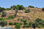 Berglandschap Naxos | Eiland Naxos | Griekenland | foto 2 - Foto van De Griekse Gids