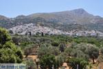 Filoti | Eiland Naxos | Griekenland | Foto 1 - Foto van De Griekse Gids