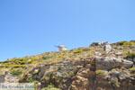 Tussen Apiranthos en Filoti | Eiland Naxos | Foto 1 - Foto van De Griekse Gids