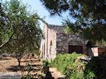 Marathi Paros | Cycladen | Griekenland foto 11 - Foto van De Griekse Gids