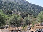 Marathi Paros | Cycladen | Griekenland foto 12 - Foto van De Griekse Gids