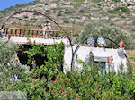 Kostos Paros | Cycladen | Griekenland foto 17 - Foto van De Griekse Gids
