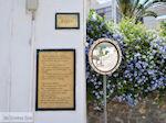 Lefkes Paros | Cycladen | Griekenland foto 13 - Foto van De Griekse Gids
