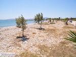 Ergens tussen Farangas en Aliki | Paros Cycladen | Griekenland foto 2 - Foto van De Griekse Gids