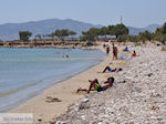 Ergens tussen Farangas en Aliki | Paros Cycladen | Griekenland foto 3 - Foto van De Griekse Gids
