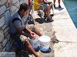Naoussa Paros | Cycladen | Griekenland foto 40