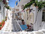 Naoussa Paros | Cycladen | Griekenland foto 74 - Foto van De Griekse Gids