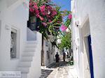 Naoussa Paros | Cycladen | Griekenland foto 76 - Foto van De Griekse Gids