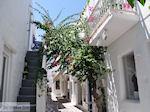 Naoussa Paros | Cycladen | Griekenland foto 83 - Foto van De Griekse Gids
