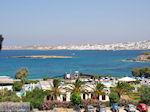 Naoussa Paros | Cycladen | Griekenland foto 104 - Foto van De Griekse Gids