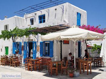 Lefkes Paros | Cycladen | Griekenland foto 32 - Foto van https://www.grieksegids.nl/fotos/eilandparos/350px/fotos-paros-062.jpg
