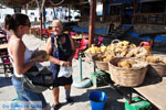 Pserimos Griekenland | De Griekse Gids | Foto 49 - Foto van De Griekse Gids