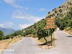 Tussen de olijfbomen en in de buurt van het Spiliani klooster, de Efpalinos tunnel en het oude theater in Pythagorion - Eiland Samos - Foto van De Griekse Gids