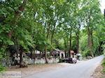 Taverna aan de Vallei der Nachtegalen bij Agios Konstandinos - Eiland Samos - Foto van De Griekse Gids