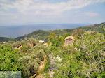 Nabij Manolates - Eiland Samos - Foto van De Griekse Gids