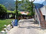 Een gezellige taverna in Manolates - Eiland Samos - Foto van De Griekse Gids