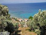 Tsamadou bij Kokkari - Eiland Samos - Foto van De Griekse Gids