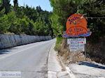 Aan de provinciale weg in Lemonakia bij Kokkari- Eiland Samos - Foto van De Griekse Gids