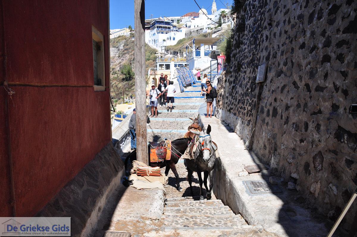 foto Fira Santorini (Thira) - Foto 66