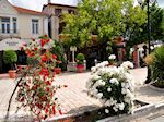Thassos stad - Limenas | Griekenland | Foto 3 - Foto van De Griekse Gids