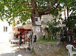 Panagia Thassos | Griekenland | Foto 3 - Foto van De Griekse Gids