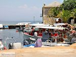 GriechenlandWeb.de Skala Potamias | Thassos Griechenland | Foto 31 - Foto GriechenlandWeb.de