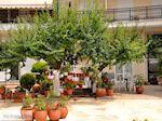 Limenas  - Thassos stad |Griekenland | Foto 2 - Foto van De Griekse Gids