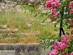 Limenas  - Thassos stad |Griekenland | Foto 10 - Foto van De Griekse Gids
