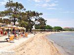 GriechenlandWeb.de Skala Rachonis | Thassos | Foto 10 - Foto GriechenlandWeb.de