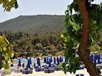 Makryammos - Strand bij Limenas (Thassos stad) | Foto 3 - Foto van De Griekse Gids