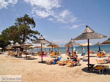 Skala Rachonis | Thassos | Foto 7 - Foto van De Griekse Gids