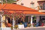 Agios Leon Zakynthos | Griekenland | De Griekse Gids nr2 - Foto van De Griekse Gids