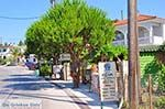 Agios Leon Zakynthos | Griekenland | De Griekse Gids nr4 - Foto van De Griekse Gids