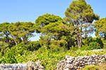 Agios Leon Zakynthos | Griekenland | De Griekse Gids nr6 - Foto van De Griekse Gids