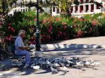 Zakynthos stad | Griekenland | De Griekse Gids nr 5 - Foto van De Griekse Gids