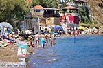 Agios Sostis Zakynthos | Griekenland | De Griekse Gids nr 41 - Foto van De Griekse Gids