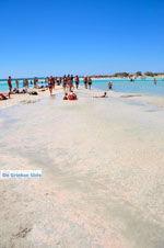 Elafonisi (Elafonissi) Kreta - Griechenland - Foto 19 - Foto GriechenlandWeb.de